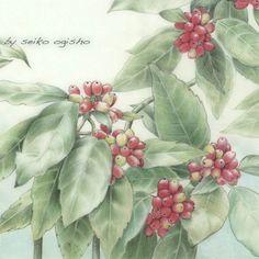 アオキ Flower Art, Art Flowers, Botanical Art, Colored Pencils, Watercolors, Illustration, Painting, Ideas, Design