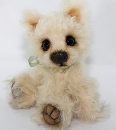 Einstein the West Highland Terrier