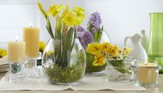 AWESOME! Clearly Creative Centerpiece Collection by PartyLite® Candles, Daffodils, Hyacinth, flowers, candles, home decor,  #PartyLite #Dekor #Tablescapes www.partylite.biz/brandigibson