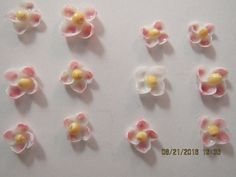 Seashell Flowers Set of 12 Tiny Handmade White Cup Shell