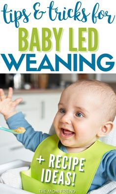 Here are some great tips and tricks for baby led weaning. And ideas for baby led weaning first foods. Try my unconventional method of introducing solids, plus easy and healthy recipe ideas. These ideas will work great starting at 4 months or when baby shows signs of readiness, up to 5 months, 6 months, 7 months, 8 months or 9 months. My baby led weaning muffins are great to throw together for breakfast and to incorporate in other meals. #baby #babies #weaning #momhacks #babyhacks #momtips Baby Led Weaning Breakfast, Baby Led Weaning First Foods, Baby Life Hacks, Newborn Schedule, Introducing Solids, Baby On A Budget, Babies First Year, Baby Development, 8 Months