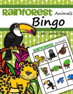 Rainforest Animals Bingo game plus 4 printables for preschool. This is a fun way… Rainforest Preschool, Rainforest Crafts, Rainforest Biome, Rainforest Activities, Preschool Jungle, Rainforest Animals, Preschool Lessons, Amazon Rainforest, Jungle Animals