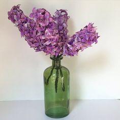 Lilac in vase.