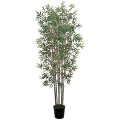 This 6' Mini Bamboo silk tree will give you that touch of oriental decor and is presented by ExcellentSilkFlowers.com.