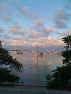 Sarasota, FL...one of my favorite places too.