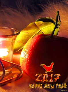 Evening still life the smell of new year wine № 15201 Calligraphy Print, Chinese Calligraphy, Chinese Calendar, New Year Designs, Red Rooster, Free Pictures, Celebration, Symbols, Wine