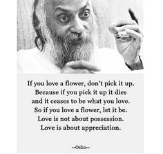 Today's Words Of Wisdom Quote: If You Love A Flower Let It Be