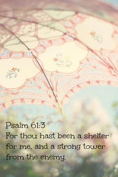 AWESOME VERSE!!! Psalm 61:3 New International Version (NIV) 3  For you have been my refuge a strong tower against the foe.