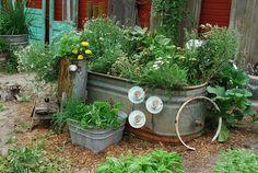 Jill Ruth & Co.: tank garden