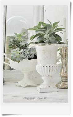 <3 white mirrors