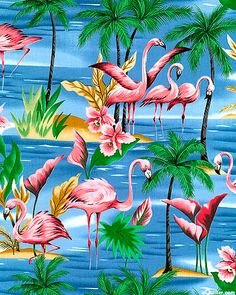 Custom Pelicans with Tropical Background Greeting Card for Sale by Jared Austin Flamingo Fabric, Flamingo Art, Pink Flamingos, Flamingo Wallpaper, Tropical Art, Tropical Paradise, Stoff Design, Tropical Background, Pink Bird