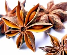 Anise Star Whole Organic Anise Oil, Need Wine, Wine Safari, Mint Sauce, Star Anise, Solid Perfume, Wine Fridge, Lavender Flowers, Diet