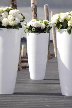Stijlvolle hoogglans witte potten, prachtig met hortensia's of een andere willekeurige plant.