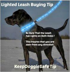 Nitebeam LED Dog Leash | Lighted Dog Leash | LED Leash