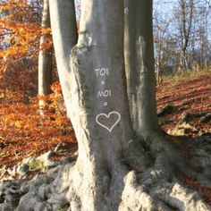 On continue sur le thème du ☀️ #Printemps 🤩 avec… la Journée Mondiale des Forêts 🌲🌳 !  Qui a déjà gravé une #déclaration sur un #arbre ? ♥️  Retrouvez vite cette carte illustrée sur notre site pour déclarer de façon originale votre amour !   #fleur #jardinage #jardin #cartepersonnalisée #goodvibes #cartepostale #20mars #bonheur #jaimeleprintemps #viveleprintemps #retourdusoleil #événement Quelques Photos, Place, Illustration, Poster, Custom Map, Greeting Card, Illustrated Maps, Thanks, Bonheur