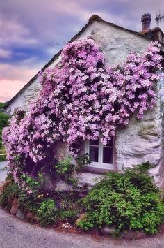 20 Fancy Homes That Are Covered In Flowers