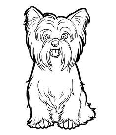 Yorkshire Terrier by CandyBeeLinearts.deviantart.com on @deviantART