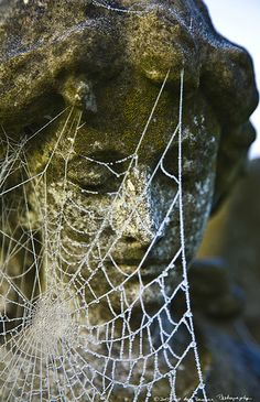 old statues and lacy cobwebs
