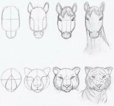 Tegninger « GuppyLife Forum