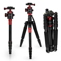 Caseflex Premium Alloy Professional Tripod Stand With Ball Head Mount for Digital Camera / Camcorder / DSLR / SLR / Video Cameras (Black & Red)