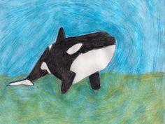 This is Malia from SeaWorld Orlando.