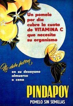 1955.