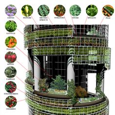 vertical agriculture in the mainstream