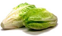 Rezepte für Gurkensalat, Nudelsalat, Kartoffelsalat und viele Rezepte mehr | Ich-Liebe-Salat.com