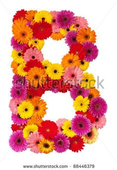 stock photo : Letter B - flower alphabet isolated on white background