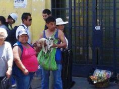 Venta de cachorros en el Centro de Lima