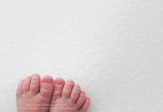 Newborn Photographer Julie Rollins, natural, organic, white, newborn posing, newborn photography, baby led, newborn workshop, los angeles newborn photos, orange county newborn photography