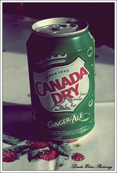 """Canada Dry ginger ale, sweet nectar brought to us by the gods. It is my every day dream to tell a flight attendant to bring me a can of Canada Dry ginger ale, not just a cup of ice with a tease of ginger ale, but the WHOLE FREAKIN' can! People tell me to make it a mixer for whiskey...[cue me slapping them in the face and telling them to not speak that way in front of children].  Canadians have this art of """"ginger aleing"""" down! Jamaicans...not so much. Thank you Canada Dry!   Joseph DiTommaso"""