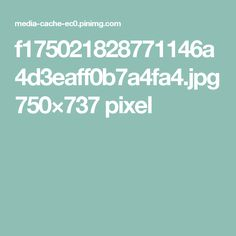 f175021828771146a4d3eaff0b7a4fa4.jpg 750×737 pixel