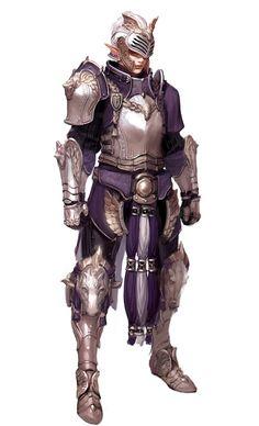 Elven maiden knight