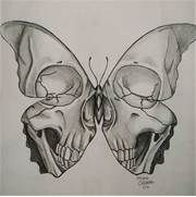 Best 25+ Butterfly drawing ideas on Pinterest | Butterfly ...