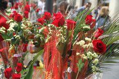 Feliç Sant Jordi! // Feliz Sant Jordi! // Happy Sant Jordi's Day!