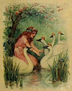 The Wild Swans -- Fairytale Illustration