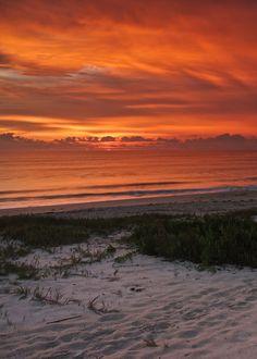 Amazing shot of the sunrise Vero Beach, FL. Beach Town, Beach Walk, Ocean Pictures, Ocean Pics, Indian River County, Vero Beach Florida, Treasure Coast, Island Beach, East Coast