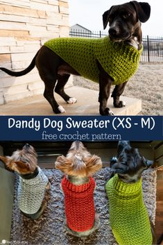 Dandy Dog Sweater Easy Crochet Dog Sweater Pattern This dog sweater pattern comes in three sizes that will fit tiny dogs to medium size dogs Whip up a sweater for your pup using Crochet Dog Sweater Free Pattern, Dog Coat Pattern, Crochet Dog Patterns, Knit Dog Sweater, Knitting Patterns Free Dog, Sweater Coats, Doll Patterns, Crochet Ideas, Crochet Dog Clothes