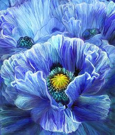Magnificent floral in alcohol ink and digital painting.