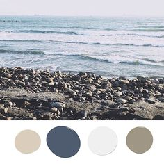 Your Next Paint Project — Inspired by the Beach!: For a room rich with color, consider deep ocean tones. Use a sapphire navy or a more subtle neutral taupe on the walls. Accent colors like a gentle white add a crisp contrast, while  whipped cream brown adds warmth.