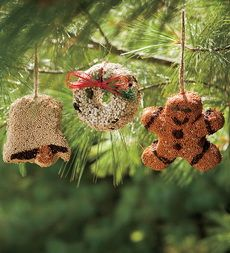 Set Of Three All-Natural Birdseed Ornaments - Plow & Hearth