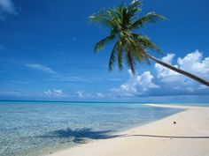 Barbados  Tied for 1st for my favorite island!