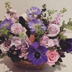 보라톤 꽃바구니 장미,아네모네,스카비오사~! 연보라,진보라 조금씩 다른 느낌 은근한 매력을 발산하는 보라꽃들이에요.♡