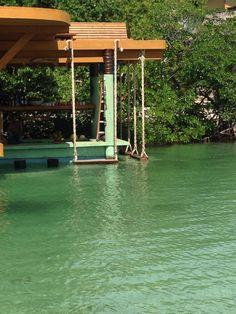 Water swing Roatan, Marina Bay Sands, Building, Water, Travel, Scenery, Gripe Water, Viajes, Buildings