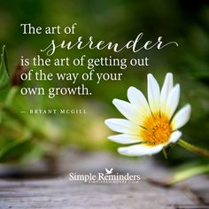 Surrender - Providence Life Coaching and Reiki Counseling - bryant-mcgill-surrender-flower April Quotes, Great Quotes, Inspirational Quotes, Bryant Mcgill, Boring Life, Healthy Mind And Body, Simple Reminders, Positive Inspiration, Daily Inspiration