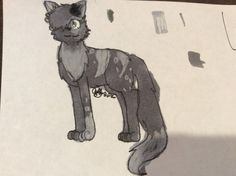 Light, she's my warrior cats OC. I also have her story up, it's a board called 'Broken Stones' 1/16/16