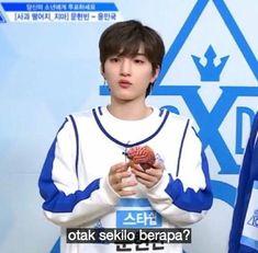 meme meme indonesia eX City produce x 101 K Meme, Funny Kpop Memes, Cute Memes, Me Too Meme, Quotes Lucu, Drama Memes, Funny Boy, Zodiac Star Signs, Tweet Quotes