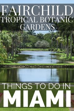 Looking for what to do in Miami? We have the 25 best things to do in Miami including a list of all the top Miami Attractions and an interactive Miami Map Usa Travel Guide, Travel Usa, Travel Guides, Travel Tips, Travel Destinations, Botanical Gardens Near Me, Miami Attractions, Buchart Gardens, Stuff To Do