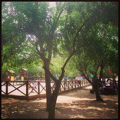 Un lugar chulisimo para pasar el día cerca de Javea. Es el parque de Les Cansalades.